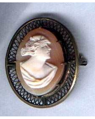 Victorian Cameo in Brass Frame